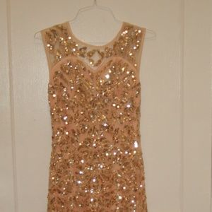 Rose Gold 1920s Vintage Flapper Glittering Gown